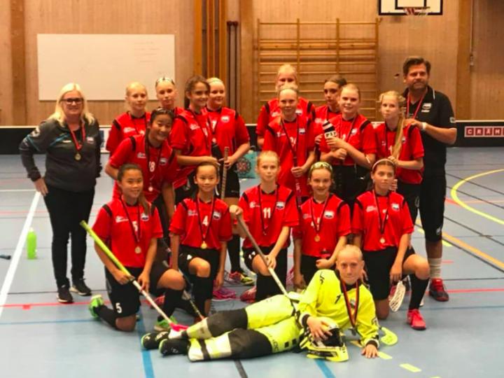 Det andra laget vi uppmärksammar i vår artikelserie om våra sponsrade lag är Sköndals IK flickor -04.
